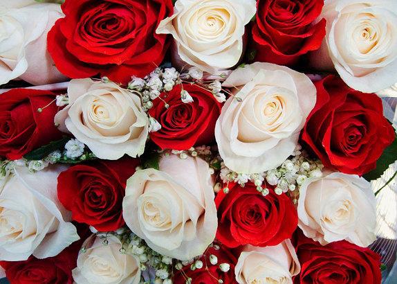 Un fleuriste offre des roses