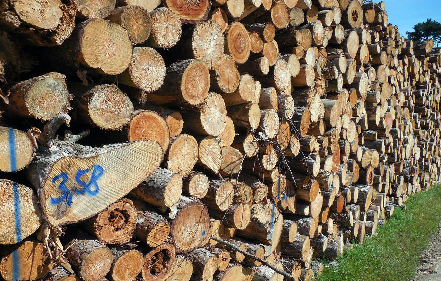 Fournisseur Bois De Chauffage - Bois de chauffage comment bien le choisir
